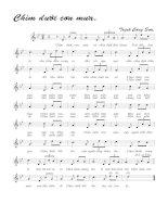 Bài hát chìm dưới cơn mưa - Trịnh Công Sơn (lời bài hát có nốt)