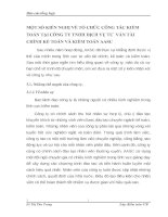 MỘT SỐ KIẾN NGHỊ VỀ TỔ CHỨC CÔNG TÁC KIỂM TOÁN TẠI CÔNG TY TNHH DỊCH VỤ TƯ  VẤN TÀI CHÍNH KẾ TOÁN VÀ KIỂM TOÁN AASC