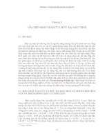 Chương 4_ Vai trò sinh thái của bức xạ mặt trời