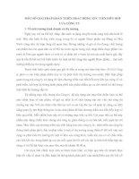 MỘT SỐ GIẢI PHÁP HOÀN THIỆN HOẠT ĐỘNG XÚC TIÊN HỖN HỢP CỦA CÔNG TY
