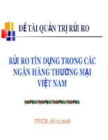 [Slide thuyết trình]rủi RO tín DỤNG TRONG các NGÂN HÀNG THƯƠNG mại VIỆT NAM