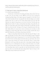 THỰC TRẠNG HOẠT ĐỘNG MÔI GIỚI CHỨNG KHOÁN TẠI CÔNG TY CHỨNG KHOÁN HABUBANK