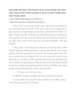 ĐẶC ĐIỂM SẢN XUẤT KINH DOANH VÀ TỔ CHỨC BỘ MÁY KẾ TOÁN HÌNH THỨC SỔ KẾ TOÁN TẠI CÔNG TY DỊCH VỤ NUÔI TRỒNG THUỶ SẢN TRUNG ƯƠNG