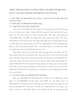THỰC TRẠNG CHẤT LƯỢNG CHO VAY ĐỐI VỚI HỘ SẢN XUẤT TẠI CHI NHÁNH NHNO&PTNT HÀ GIANG