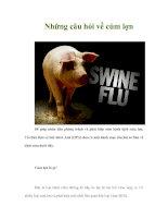 Những câu hỏi về cúm lợn