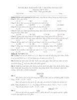 Bài soạn ĐỀ THI HSG LỚP 5. THÁNG 1- 2011