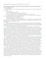 Bài giảng Các đề luyện tập cho truyện ngắn Vợ chồng A Phủ