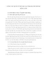 CÔNG TÁC QUẢN LÝ RỦI RO TẠI VPBANK CHI NHÁNH ĐÔNG ANH