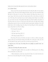 NỘI DUNG CHUYÊN ĐỀ HẠCH TOÁN VỐN BẰNG TIỀN