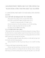 GIẢI PHÁP PHÁT TRIỂN CHO VAY TIÊU DÙNG TẠI NGÂN HÀNG CÔNG THƯƠNG KHU VỰC BA ĐÌNH