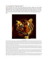 Bài giảng Vì sao gọi hổ là ông ba mươi