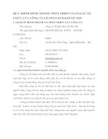 QUÁ TRÌNH HÌNH THÀNH  PHÁT TRIỂN VÀ CƠ CẤU TỔ CHỨC CỦA CÔNG TY CỔ PHẦN KIM KHÍ HÀ NỘ1