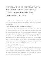 THỰC TRẠNG VỀ TỔ CHỨC ĐÀO TẠO VÀ PHÁT TRIỂN NGUỒN NHÂN LỰC TẠI CÔNG TY BẢO HIỂM NHÂN THỌ PRUDENTIAL VIỆT NAM