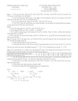 Bài giảng Đề và đáp án tổng hợp thi HSG tỉnh môn hoá -Ninh Hòa.doc