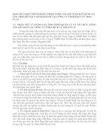 MỘT SỐ Ý KIẾN NHẰM HOÀN THIỆN CÔNG TÁC KẾ TOÁN BÁN HÀNG VÀ XÁC ĐỊNH KẾT QUẢ KINH DOANH TẠI CÔNG TY TNHH DỊCH VỤ MISA PLUS