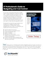 IT Professional''''s Guide to Budgeting and Cost Control