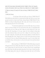 MỘT SỐ GIẢI PHÁP GÓP PHẦN HOÀN THIỆN CÔNG TÁC HẠCH TOÁN VỐN BẰNG TIỀN TẠI CÔNG TY TNHH TM  PT THIỀU HIỀN