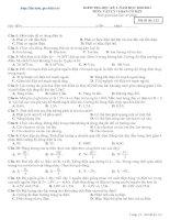 Bài soạn Đề TK thi HK I Lý 11 số 1