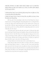 PHƯƠNG HƯỚNG VÀ BIỆN PHÁP HOÀN THIỆN GIÁ VÀ PHƯƠNG PHÁP TÍNH GIÁ BÁN SẢN PHẨM CỦA CÔNG TY BÓNG ĐÈN PHÍCH NƯỚC RẠNG ĐÔNG