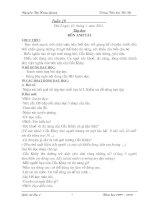Bài giảng GA lop 4- Tuan 19