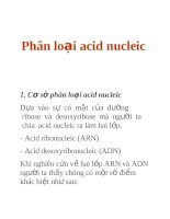 Phân loại acid nucleic