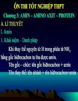 Tài liệu Ôn thi TNTHPT - Chương 3: Amin - Amino ãit