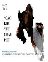 Tài liệu Bài 33, CÁC KHU VỰC CHÂU PHI (tt)