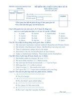 Bài soạn Đề thi HSG lớp 4 môn Tiếng Anh 5 HK II