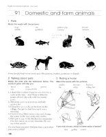 English Vocabulary Organiser With Key_Domestic and farm animals