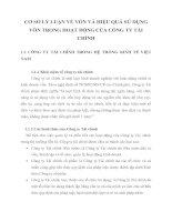 CƠ SỞ LÝ LUẬN VỀ VỐN VÀ HIỆU QUẢ SỬ DỤNG VỐN TRONG HOẠT ĐỘNG CỦA CÔNG TY TÀI CHÍNH