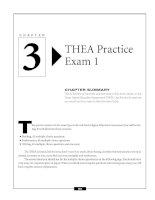 THEA Practice Exam 1