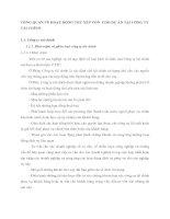 TỔNG QUAN VỀ HOẠT ĐỘNG THU XẾP VỐN  CHO DỰ ÁN TẠI CÔNG TY TÀI CHÍNH