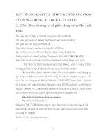 PHÂN TÍCH CHUNG TÌNH HÌNH TÀI CHÍNH CỦA CÔNG TY CỔ PHẦN DỤNG CỤ CƠ KHÍ XUẤT KHẨU