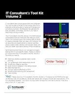 IT Consultant's Tool Kit Volume 2