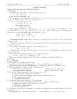 Lý thuyết - bài tập kim loại