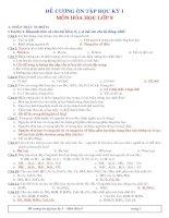 Hóa học 8 (Đề cương ôn tập HKI 08-09)