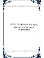 do-an-nghien-cuu-ung-dung-cong-nghe-dien-thoai-tren-internet