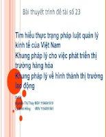 tìm hiểu thực trạng quản lý kinh tế của Việt Nam