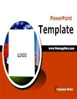 PowerPoint Template 47 (tuyệt đẹp)
