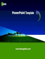 PowerPoint Template 45 (tuyệt đẹp)