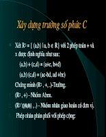 truong so phuc