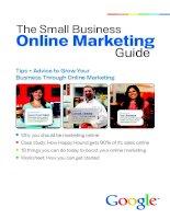 Tài liệu The Small Business Online Marketing Guide pdf
