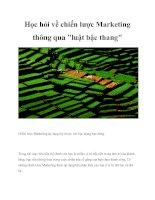 Tài liệu Học hỏi về chiến lược Marketing thông qua