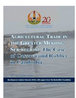 Tài liệu AGRICULTURAL TRADE IN THE GREATER MEKONG SUB-REGION: The Case of Cassava and Rubber in Cambodia pdf