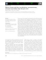 Tài liệu Báo cáo khoa học: Marine toxins and the cytoskeleton: pectenotoxins, unusual macrolides that disrupt actin pptx