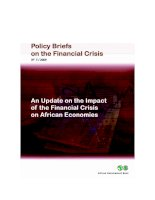 Tài liệu POLICY BRIEFS ON THE FINANCIAL CRISIS: AN UPDAATE ON THE IMPACT OF THE FINANCIAL CRISIS ON AFRICAN ECONOMIES ppt