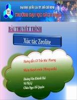Bài thuyết trình Xúc tác Zeolite