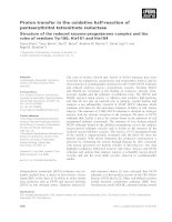 Tài liệu Báo cáo khoa học: Proton transfer in the oxidative half-reaction of pentaerythritol tetranitrate reductase Structure of the reduced enzyme-progesterone complex and the roles of residues Tyr186, His181 and His184 pdf