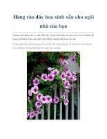 Tài liệu Hàng rào dây hoa xinh xắn cho ngôi nhà của bạn pdf