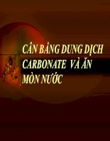 đề tài cân bằng dung dịch carbonate và ăn mòn